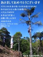2008nenga2.jpg